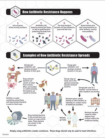 Learn About Antibiotic Resistance