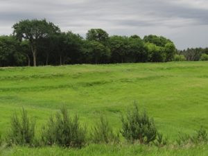 Land for Sustainable Farming