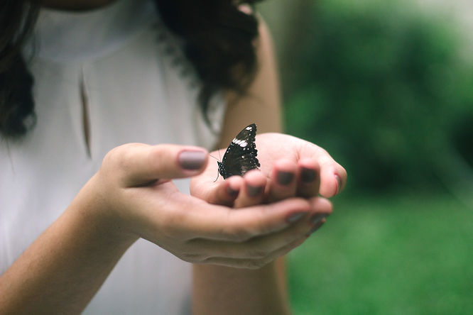 black butterfly on woman's palm_edited.j