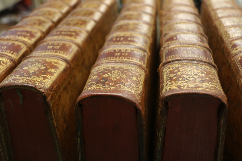 biblio_france_après.JPG