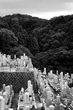 japan (70 of 4).jpg
