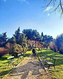 Walking Park.JPG
