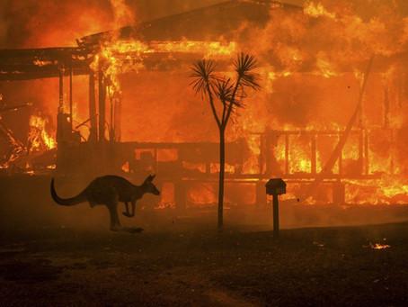 Fake Austrálie: Dezinformační kampaně zneužívají tragické požáry k šíření lží a strachu