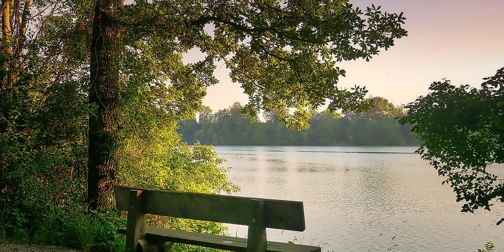 Randonnée Urbaine • « Des rives de l'Aar à la Vogelau en longeant l'Ill »