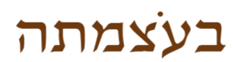 logo_dongi-1%20(2)_edited.png