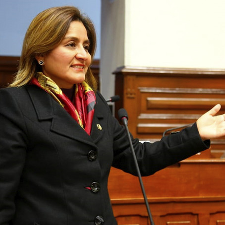 Tania Rodas afirma que APP votará a favor de eliminar inmunidad parlamentaria