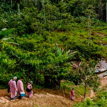 Cedro busca mitigar impacto de la COVID-19 en la Amazonía