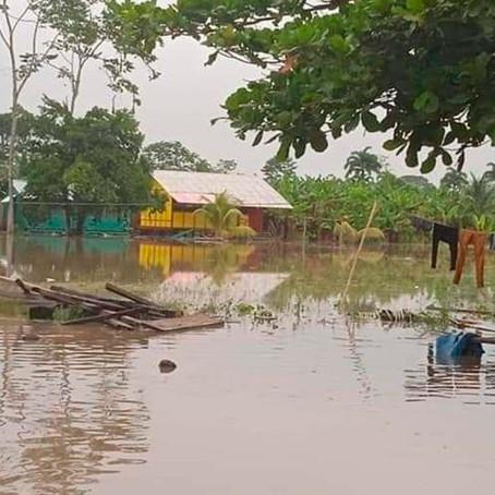 Casi 200 comunidades nativas son las más afectadas por crecida del Ucayali