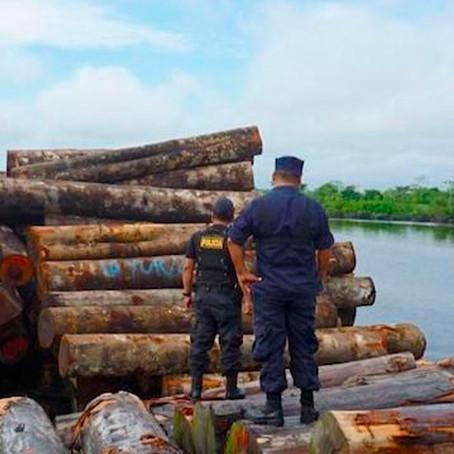 """Daniel Arias :""""Parque Industrial de la Madera generará aumento del PBI en la región"""""""