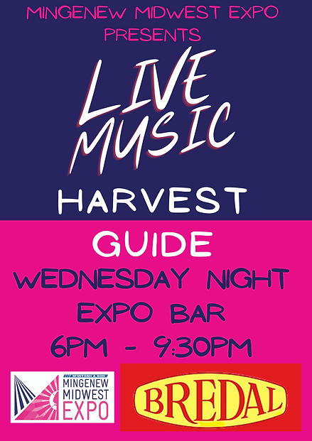 live music flyer.png