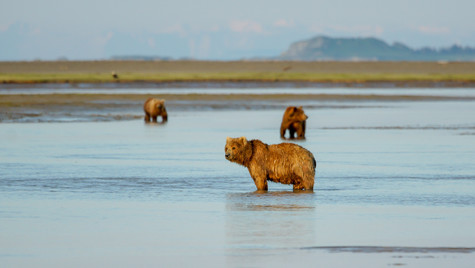 Alaska2873.jpg