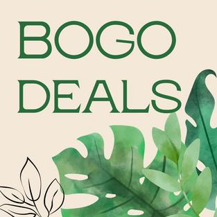Summer BOGO Deals