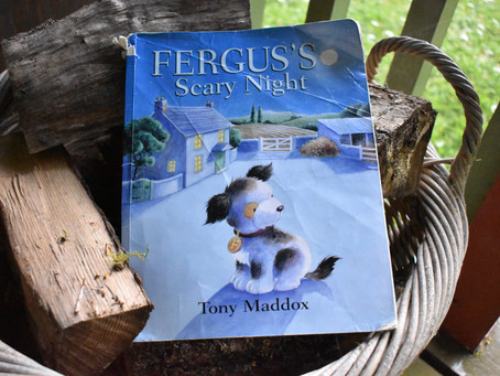 Fergus's Scary Night - Book of the month