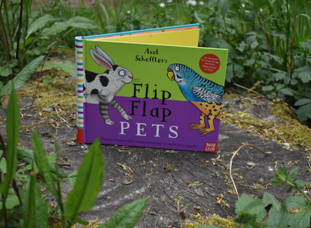Flip Flap Pets - Book of the month