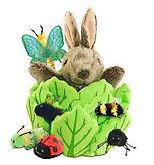 Peter rabbit lettuce.jpg
