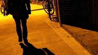 Polizei schützt Sexualstraftäter mehr als Frauen