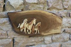 trio cheval oeil