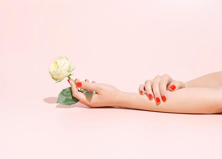 Sostiene una rosa
