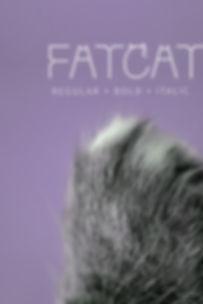 Fatcat-Cover-Portrait.jpg