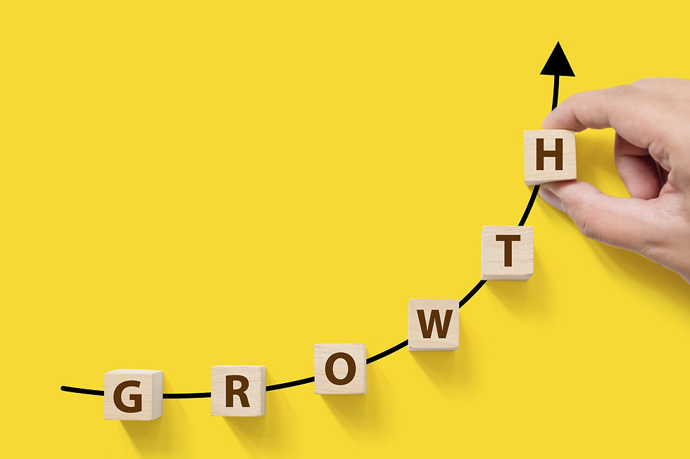 Business success growing growth increase