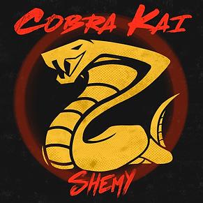 Cobra Kai.png