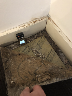 Moisture, mould and damage are often hidden