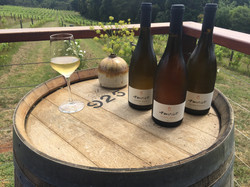 amrit wines