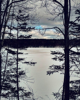_when snow falls, nature listens__#vankl