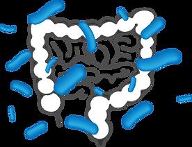 PS128_microbiota.png