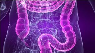 For better mental health, follow your gut