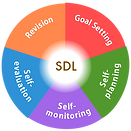 webimg_5_SDL_indicators_en.png