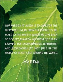 Aveda's Mission Statement