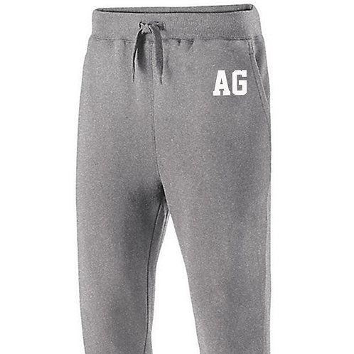EXTENDED SIZES AG JOGGER PANTS 2295448 1 2