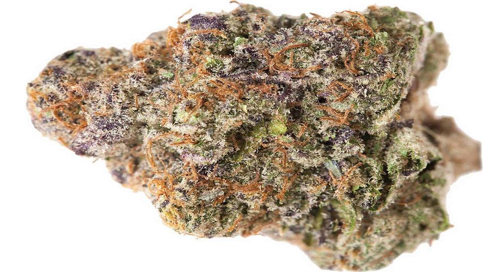 Purple Punch - Hybrid