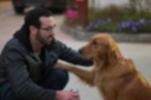 lindsay dog.jpg