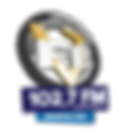 Logo-Campina.png