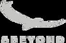 &Beyond logo.png