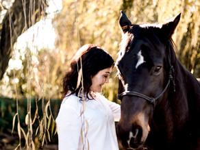 "REINVENTING THE TERM ""HORSEPOWER"""