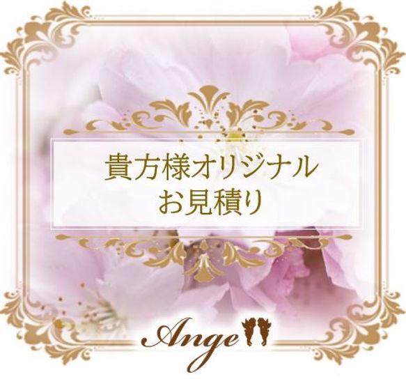 脱毛サロンAngeの貴方様オリジナルお見積り:刈谷・安城・高浜・西尾・豊田.JP