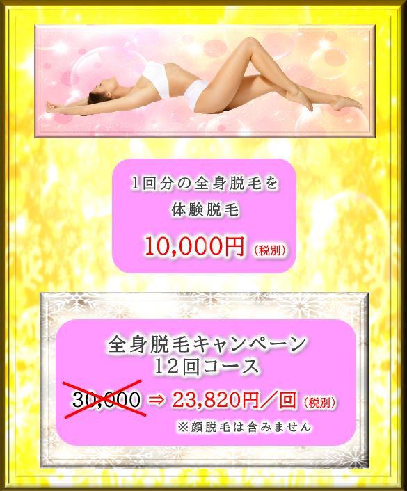 全身脱毛のキャンペーンの説明:全身脱毛の体験脱毛が1万円、12回コースが30000円⇒23820円/回(20%オフ)