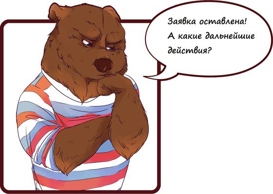 медведь в окне-min.png