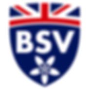 LAUDE THE BRITISH SCHOOL OF VILA-REAL.pn