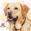 Thumbnail: Pet Portrait  Cartoon Detailed style (with splashes)- personalise