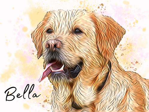 Pet Portrait  Cartoon Detailed style (with splashes)- personalise