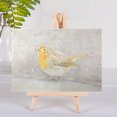 Animal Aura - Robin in snow - Greetings Card