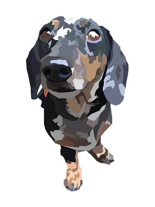 Digital Pet Portrait - Natural Colour