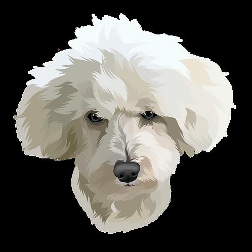 Pet Portrait  Cartoon style Blocked - personalise!