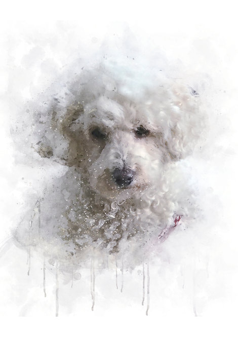Pet Portrait  Watercolour Naturals - personalise