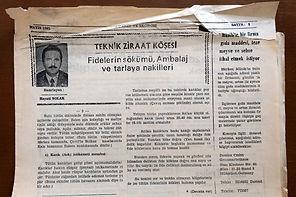 1981 Mayıs Gazete kupürü