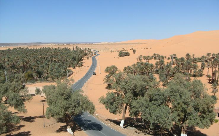 Argelia (Marzo 2012)